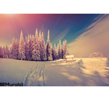 Panorama of the winter sunrise in the forest Wall Mural Wall Tapestry tapestries