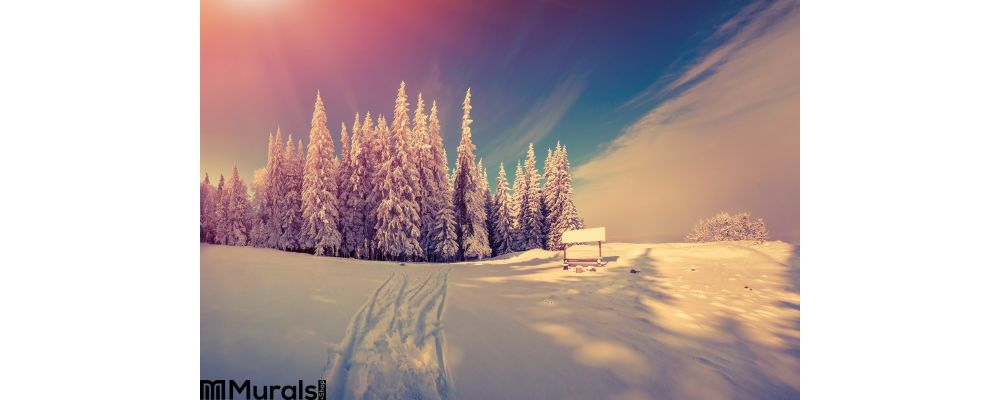 Panorama of the winter sunrise in the forest Wall Mural