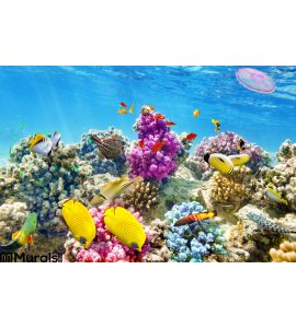 Underwater World Corals Tropical Fish Wall Mural