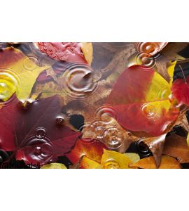 Autumn Leaves Water Rain Background Wall Mural