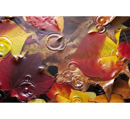 Autumn Leaves Water Rain Background Wall Mural Wall Tapestry tapestries