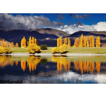 Lake Benmore New Zealand Wall Mural Wall Tapestry tapestries