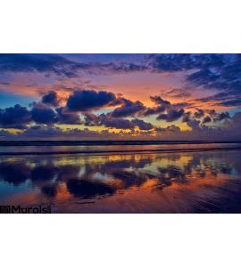 Ocean Sunset Wall Mural Wall Tapestry tapestries