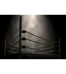 Classic Vintage Boxing Ring Wall Mural