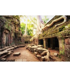 Angkor Wat Cambodia Ta Prohm Khmer Ancient Buddhist Temple Wall Mural