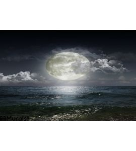 Moon Reflecting Lake Wall Mural