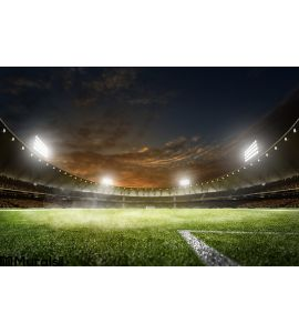 Empty Night Grand Soccer Arena Lights Wall Mural
