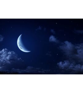 Big Moon Stars Cloudy Night Blue Sky Wall Mural
