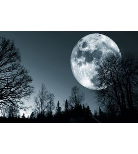 Night Moon Sky Wall Mural