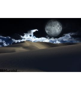 Night Desert Wall Mural