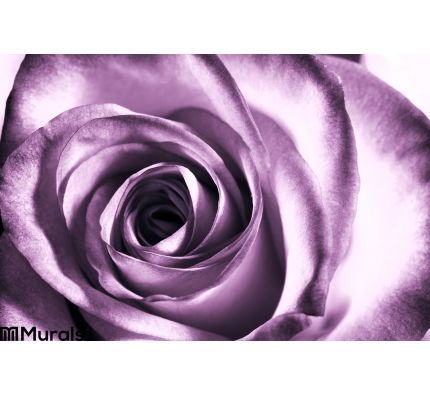 Purple Rose Wall Mural Wall Tapestry tapestries
