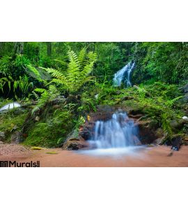 Jungle Background Wall Mural Wall Tapestry tapestries