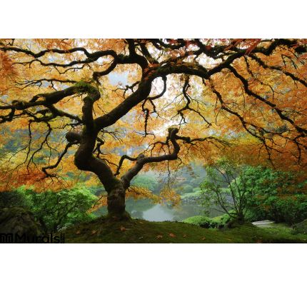 Autumn Maple Wall Mural Wall Tapestry tapestries