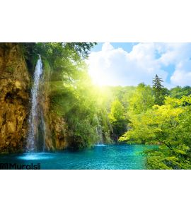 Waterfalls Forest Wall Mural