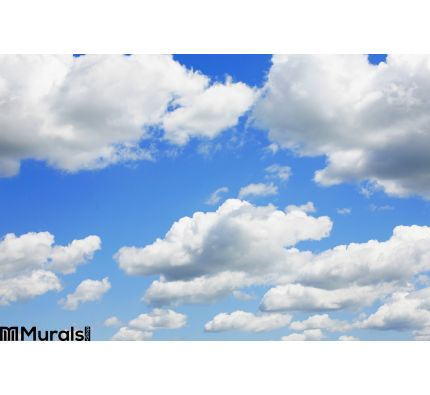 Blue Sky Puffy Clouds Wall Mural Wall Tapestry tapestries
