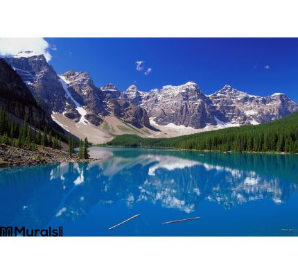 Blue Lake Mountains Wall Mural Wall Tapestry tapestries