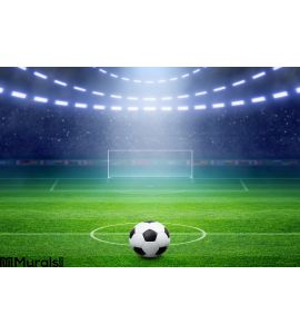 Soccer Stadium Wall Mural Wall Tapestry tapestries