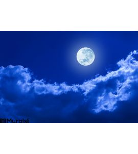 Full Moon Clouds Night Sky Wall Mural