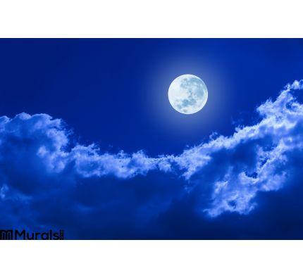 Full Moon Clouds Night Sky Wall Mural Wall art Wall decor
