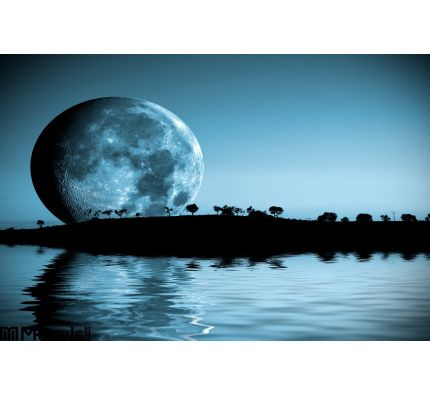 Moon Landscape Wall Mural Wall art Wall decor