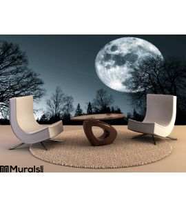 Night Moon Sky Wall Mural Wall Tapestry tapestries