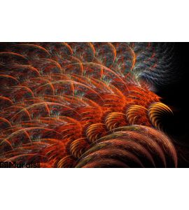 Red Feathers Wore Wall Mural Wall art Wall decor