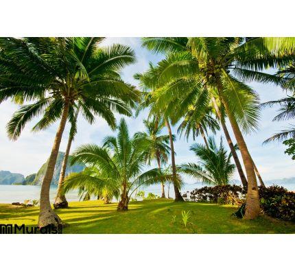 Exotic Palms Resort Grounds Wall Mural Wall art Wall decor