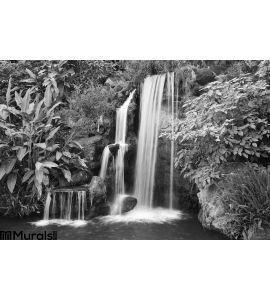 Black and White Waterfall Wall Mural