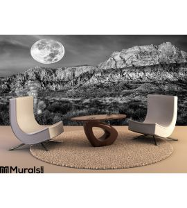 Desert Mountains Night Full Moon Wall Mural Wall art Wall decor
