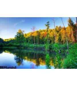 Beaver Pond Sunset Wall Mural Wall Tapestry tapestries
