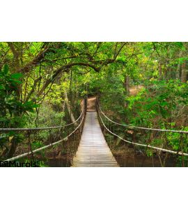 Bridge To Deep Jungle Wall Mural Wall Tapestry tapestries