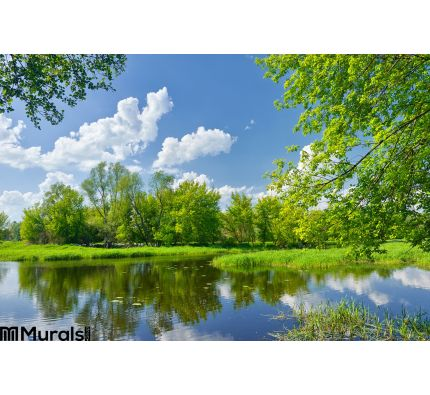 Spring Landscape River Clouds Blue Sky Green Trees Wall Mural Wall art Wall decor