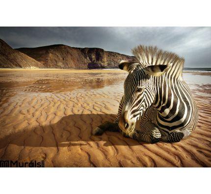 Beach Zebra Wall Mural Wall art Wall decor