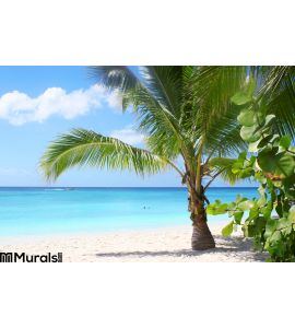 Tropical Beach Bay Wall Mural