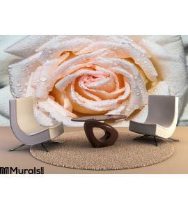 Wet Rose Wall Mural Wall art Wall decor