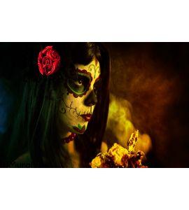 Artistic Shot Sugar Skull Girl Dead Roses Wall Mural Wall art Wall decor