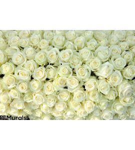 Group White Roses Wedding Decorations Wall Mural Wall art Wall decor
