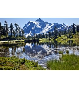 Reflection Lake Mount Shuksan Washington State Wall Mural Wall art Wall decor
