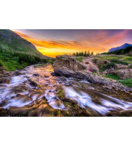 Swiftcurrent Creek Dawn Wall Mural