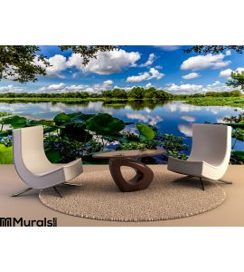 Colorful Wide Angle Shot Beautiful 40 Acre Lake Summer Yellow Lotus Lilies Blue Skies White Clouds Green Foliage Wall Mural Wall