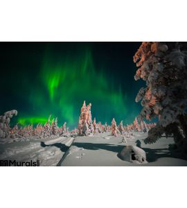 Winter Night Landscape Forest Moon Northern Light Over Forest Wall Mural