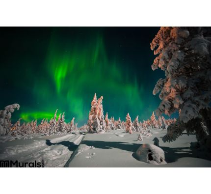 Winter Night Landscape Forest Moon Northern Light Over Forest Wall Mural Wall Tapestry tapestries
