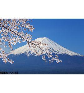 Mount Fuji View Lake Kawaguchiko Wall Mural Wall Tapestry tapestries