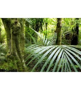 Tropical Forest Wall Mural Wall Tapestry tapestries
