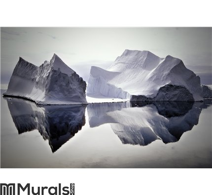 Icebergs Reflected in Still Waters Wall Mural Wall art Wall decor