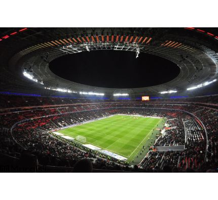 Night view of the Stadium Donbass Arena Wall Mural Wall Tapestry tapestries