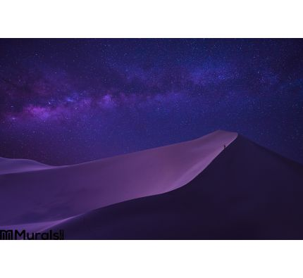 Milky way in sahara desert Wall Mural Wall art Wall decor