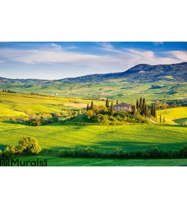 Tuscany landscape at sunset Wall Mural