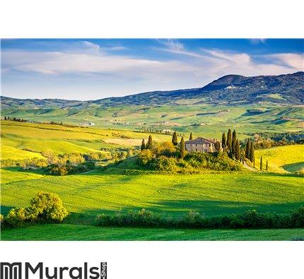 Tuscany landscape at sunset Wall Mural Wall art Wall decor