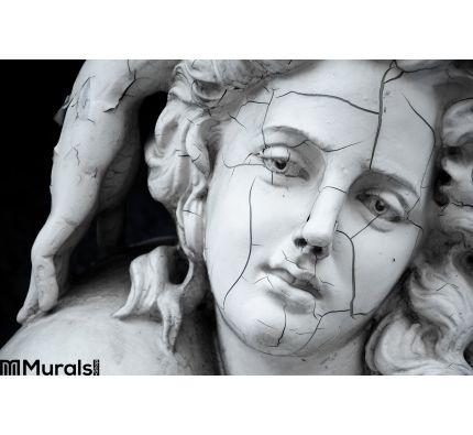 Cracked Face Female Greek Sculpture Wall Mural Wall art Wall decor